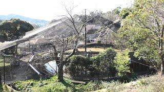 バードドーム (みさき公園) 2020年1月19日