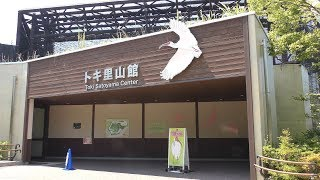 トキ里山館 (いしかわ動物園) 2019年8月18日