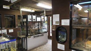 こども動物村 展示館 (宮崎市フェニックス自然動物園) 2019年12月9日