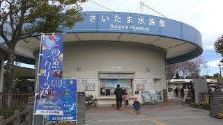 庭池 (さいたま水族館) 2018年12月9日