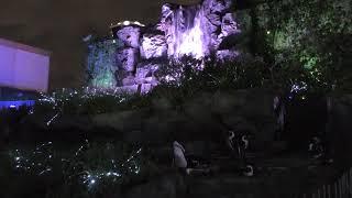 夜の ケープペンギン (サンシャイン水族館) 2018年8月23日