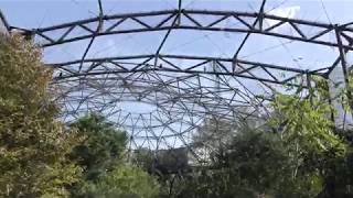 鳥の楽園 (天王寺動物園) 2017年11月3日
