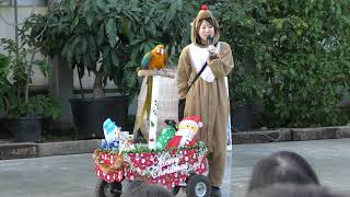 バードショー『トリチョイサーカス』クリスマスver (掛川花鳥園) 2017年12月10日