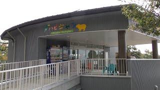 ハピジャン (足羽山公園遊園地) 2019年11月1日