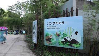 パンダのもり (上野動物園) 2020年9月11日