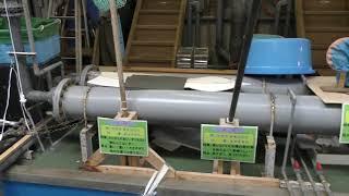 バックヤードコーナー (魚津水族館) 2019年8月15日