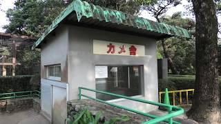 カメ舎 (宮崎市フェニックス自然動物園) 2019年12月9日
