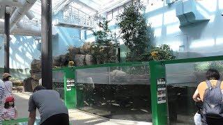 郷土の水辺 (いしかわ動物園) 2019年8月18日