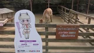 アルパカとけものフレンズパネル (長崎バイオパーク) 2017年12月23日