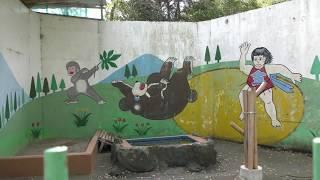 ツキノワグマ舎 (和歌山城公園 動物園) 2018年12月24日