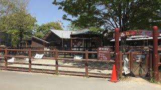 ふれあい広場 (熊本市動植物園) 2019年4月18日