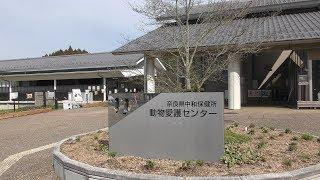 動物愛護センター (うだ・アニマルパーク) 2019年3月20日