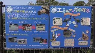 どうぶつ×飼育員アワード2019 (大牟田市動物園) 2019年4月19日