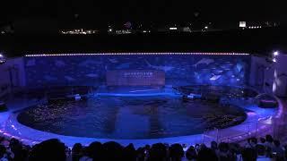 ナイトドルフィンパフォーマンス (仙台うみの杜水族館) 2019年8月14日