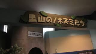 郷土動物館 (富山市ファミリーパーク) 2019年8月15日