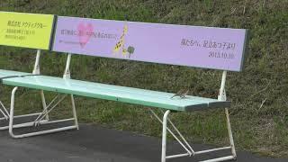スズメ (北海道 釧路市) 2019年7月4日