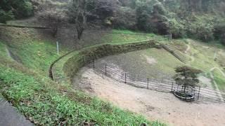 第3放牧場 (野間馬ハイランド) 2019年12月26日