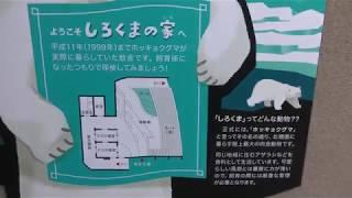 しろくまの家 (野毛山動物園) 2017年12月16日