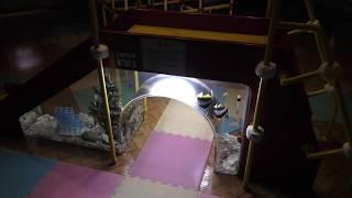 すべり台水槽 (ヨコハマ赤ちゃん水族館) 2017年12月16日