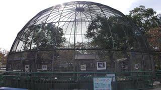 鳥ドーム (さくら公園 こども動物園) 2019年11月3日
