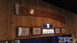 エビとカニの水族館 (2018年12月26日)
