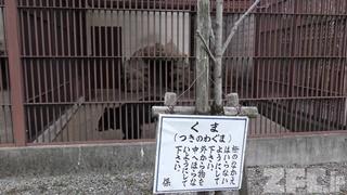 龍野公園 動物園 (2019年2月13日)