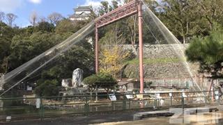 和歌山城公園 動物園 (2018年12月24日)