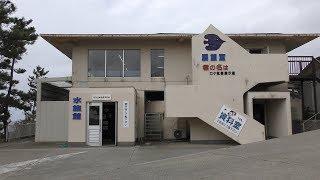 Senkaku Bay Ageshima Amusement Park Aquarium (April 7, 2019)