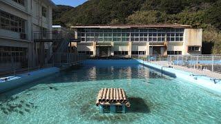 MUROTO Schoolhouse Aquarium (December 20, 2019)