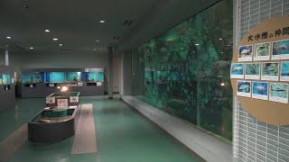 Fukuyama University Marine Bio-Center Aquarium (December 26, 2019)