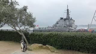 市立しものせき水族館 海響館 (2019年4月26日)