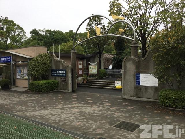 江戸川区 自然動物園