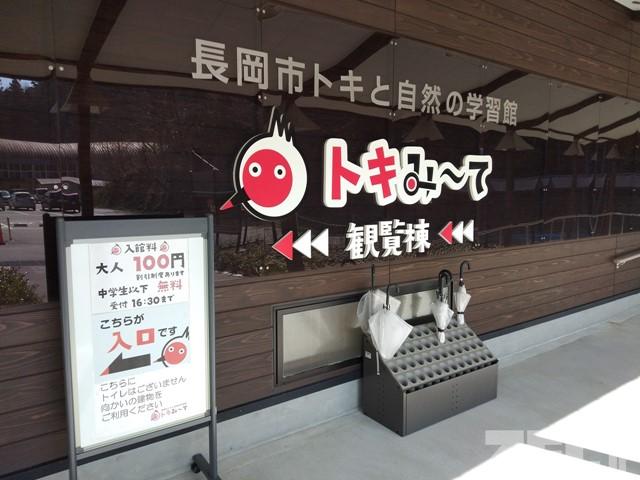 長岡市トキと自然の学習館(トキみ~て)