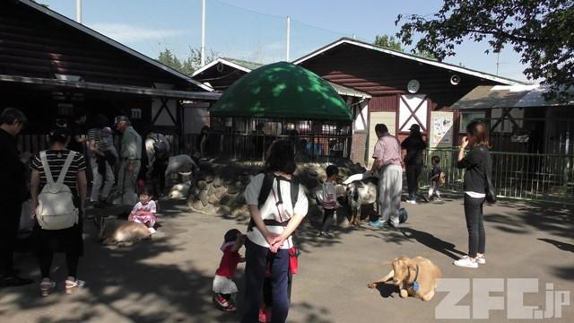 板橋区立こども動物園 本園