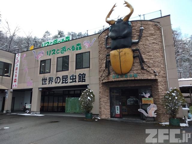 飛騨高山まつりの森 世界の昆虫館「リスと遊べる森」