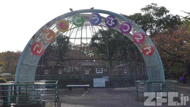 さくら公園 こども動物園