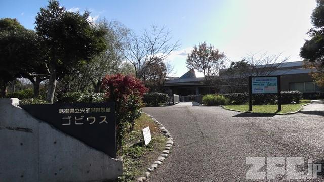 島根県立宍道湖自然館 ゴビウス
