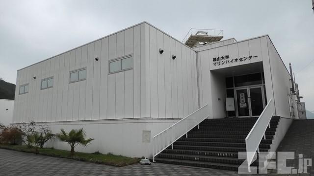 福山大学マリンバイオセンター 水族館